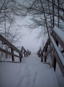 winter 003